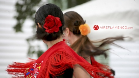 Flamenco con más de 20 millones de reproducciones