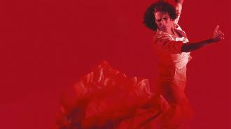 ¿Por qué no puede haber tablaos flamencos en Málaga?