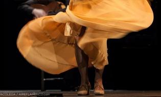La tragedia y oportunidad flamenca en España