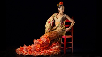 Flamenco en los XVIII Premios Max de las artes escénicas