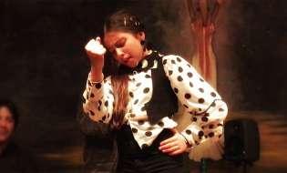 8 millones de espectadores del baile flamenco de Claudia La Debla en AIREFLAMENCO.com