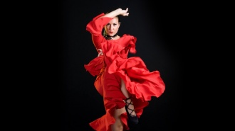 El movimiento flamenco de Portland