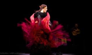 Nominados flamencos en los XXI Premios Max de las artes escénicas