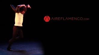 Flamenco cambio de imagen en tu diario flamenco