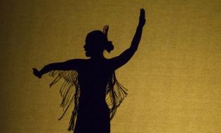El principal problema del baile flamenco y la danza española