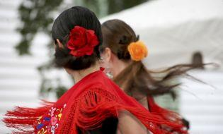 El origen y destino del flamenco