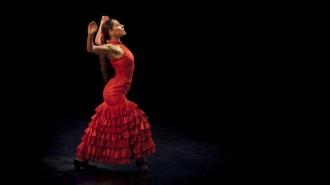 Flamenco entre albóndigas suecas en IKEA