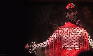 Festival Internacional del Cante de las Minas 2019 en Madrid