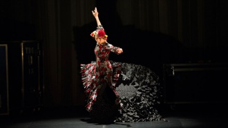Festival Flamenco en San Petersburgo 2016
