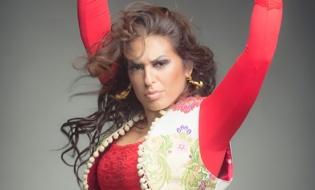 Flamenco en Veranos de la Villa 2017
